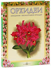 Орхидеи. Линдения - иконография орхидей (подарочное издание)