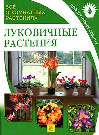 Все о комнатных растениях. Луковичные растения