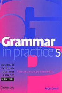 Grammar in Practice 5