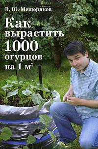 Как вырастить 1000 огурцов на 1 м2