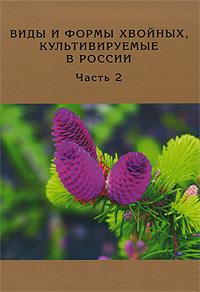 Виды и формы хвойных, культивируемые в России. Часть 2. Picea A. Dietr., Thuja L