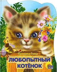 Любопытные котенок