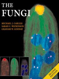 The Fungi