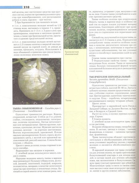 Энциклопедия лекарственных растений народной медицины