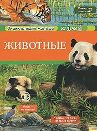 Животные12296407В этой прекрасно иллюстрированной книге собрано множество интересных фактов о животном мире нашей планеты. Ваши дети узнают ответы на самые разные вопросы. Почему тигр полосатый? Панда - это медведь? Почему летучие мыши спят вниз головой? Зачем слону хобот? Что находится в горбу у верблюда? Читайте книгу и познавайте животный мир вместе с вашим малышом.