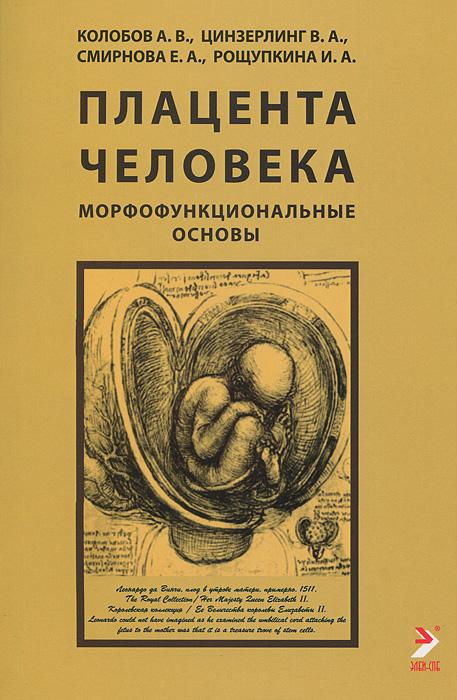 Плацента человека. Морфофункциональные основы