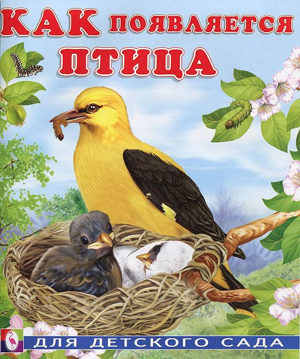 Как появляется птица ( 978-5-7833-1116-1 )