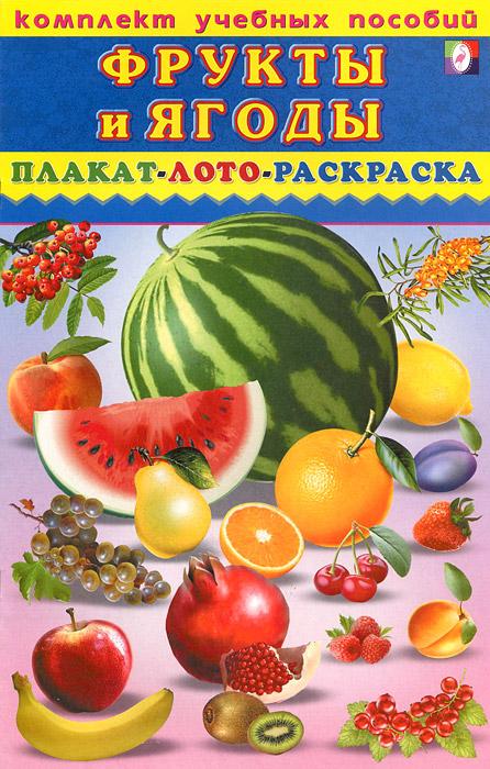 Комплект учебных пособий. Фрукты и ягоды. Плакат. Лото. Раскраска