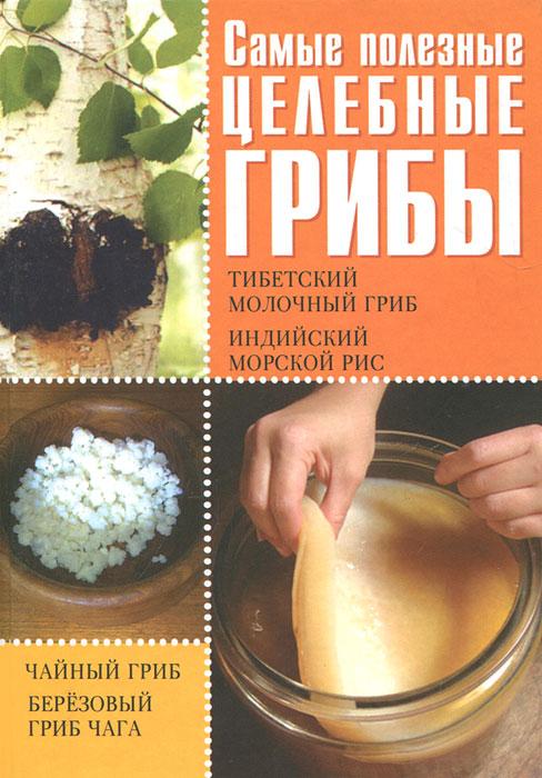 Самые полезные целебные грибы. Тибетский молочный гриб. Индийский морской гриб. Чайный гриб. Березовый гриб чага