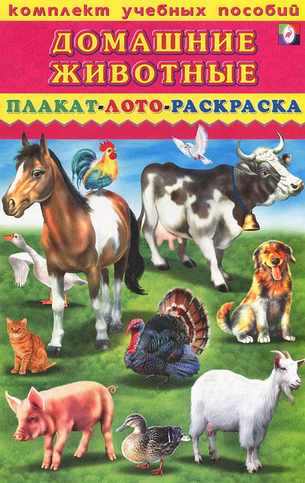 Домашние животные. Плакат, лото, раскраска
