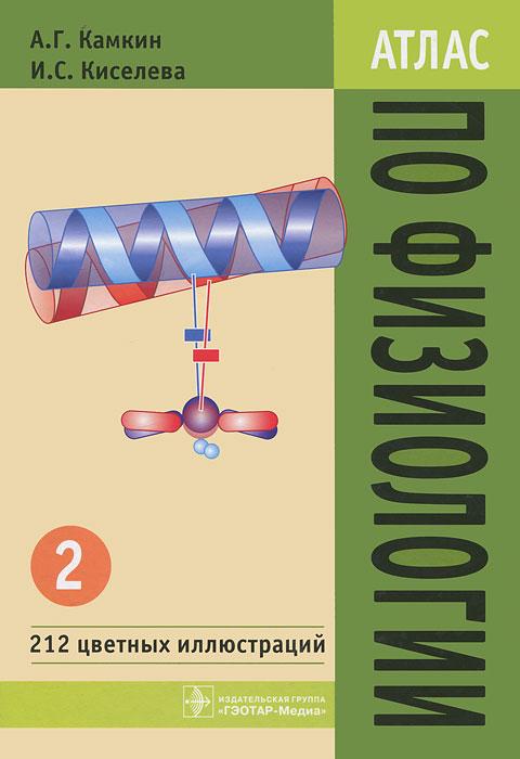 Атлас по физиологии. В 2 томах. Том 2