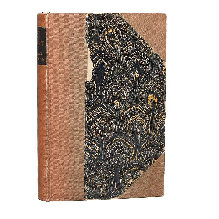Сверхчеловек в современной литературе. Глава к истории умственного развития XIX века