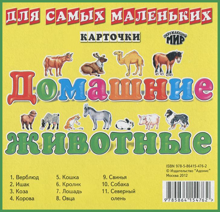 Домашние животные (набор из 11 карточек)