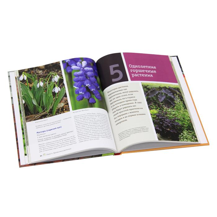 Садовый дизайн. Идеальные решения для вашего участка