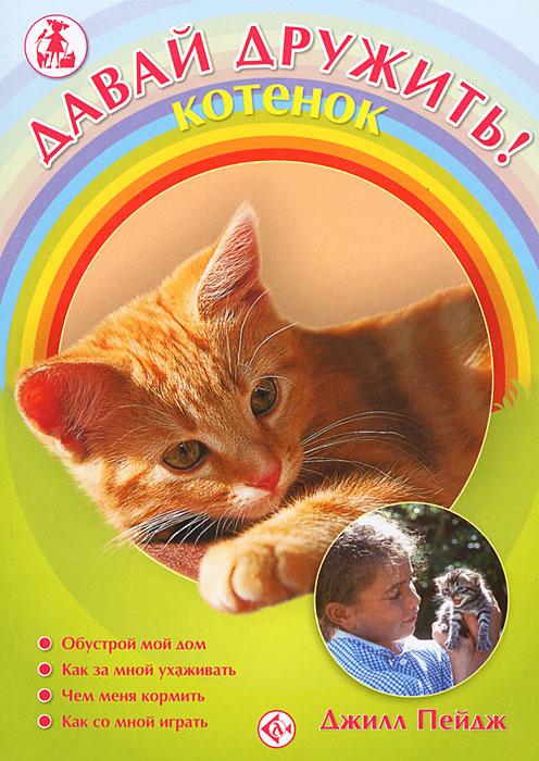 Давай дружить! Котенок12296407В книге рассказывается о кошках: как за ними ухаживать, кормить, заботиться об их здоровье. Также здесь вы найдете много ценных советов по обустройству жилища вашего питомца, описаний лакомств и игрушек для него. Книга написана живым, очень понятным и доступным языком, она будет интересна и полезна и самым юным любителям животных, и их родителям.