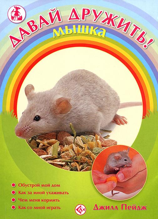 Давай дружить! Мышка