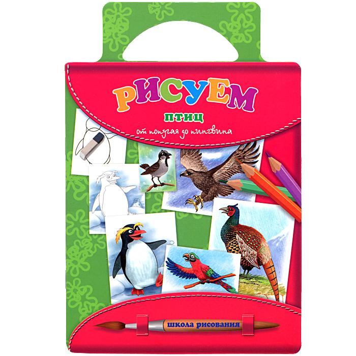 Рисуем птиц. От попугая до пингвина