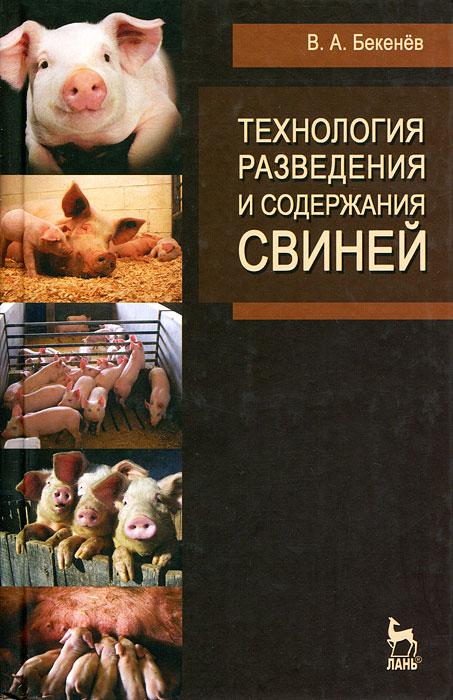 Технология разведения и содержания свиней