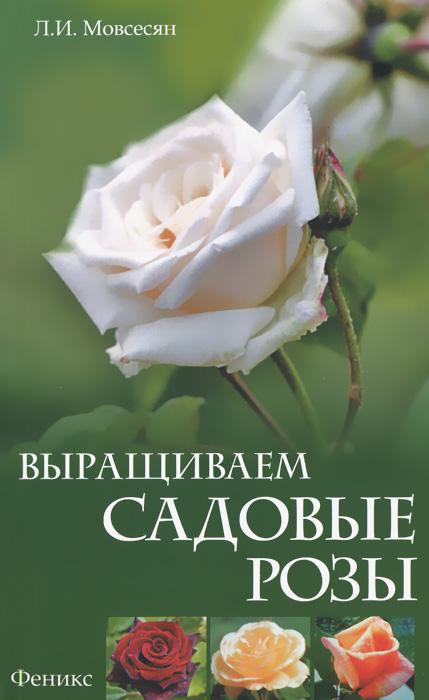 Выращиваем садовые розы