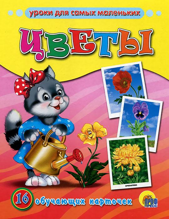Цветы. 16 обучающих карточек