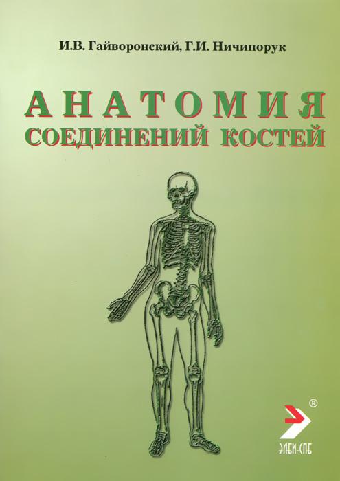 Анатомия соединений костей
