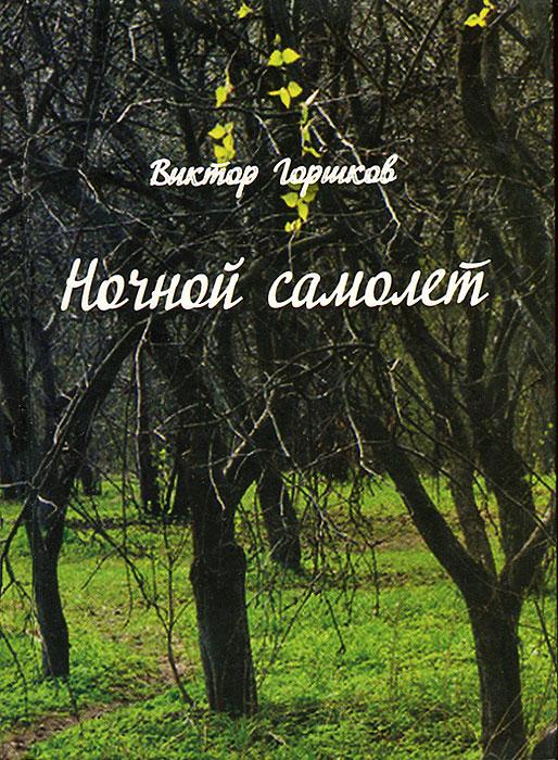 Ночной самолет. Виктор Горшков