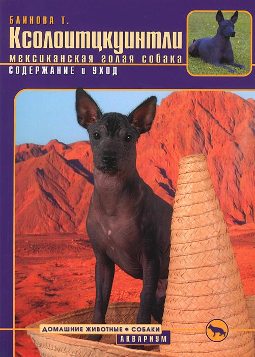 Ксолоитцкуинтли (мексиканская голая собака) Содержание и уход