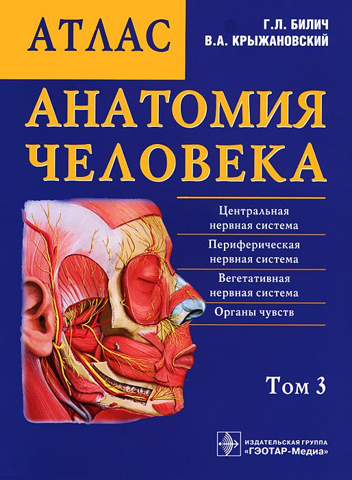 Анатомия человека. Атлас. В 3 томах. Том 3