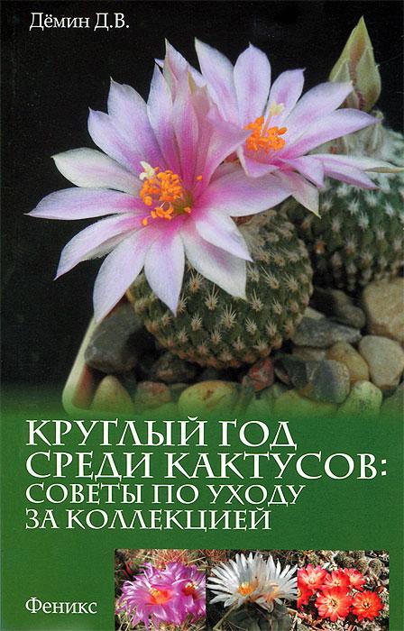 Круглый год среди кактусов. Советы по уходу