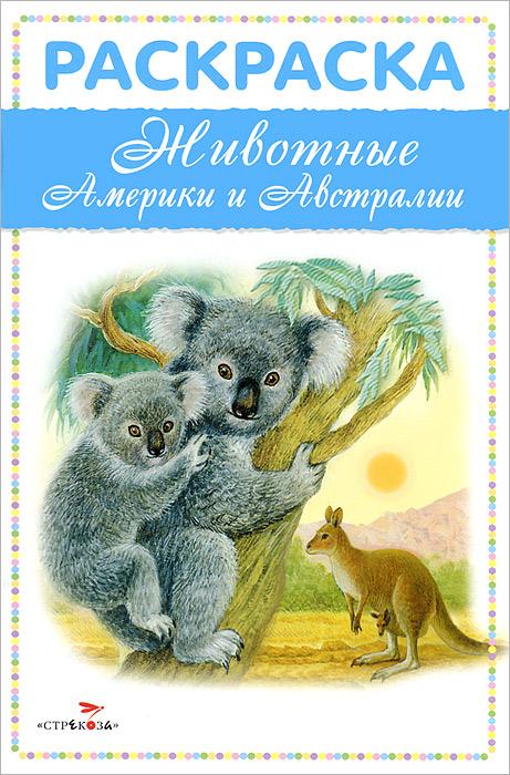 Животные Америки и Австралии . Раскраска