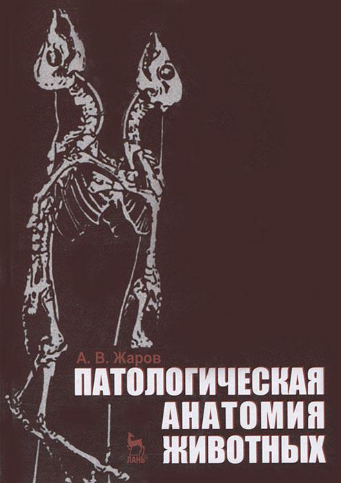 Патологическая анатомия животных12296407Учебник состоит из двух разделов. В первом разделе Общая патологическая анатомия изложены сущность и морфологические основы типовых патологических процессов в организме животных. Во втором разделе Частная, или специальная, патологическая анатомия описаны причины, морфогенез, патоморфологические изменения, диагностика болезней органов и систем организма, метаболических, инфекционных и паразитарных (инвазионных) болезней животных. Предназначен для студентов вузов, обучающихся по специальности Ветеринария.