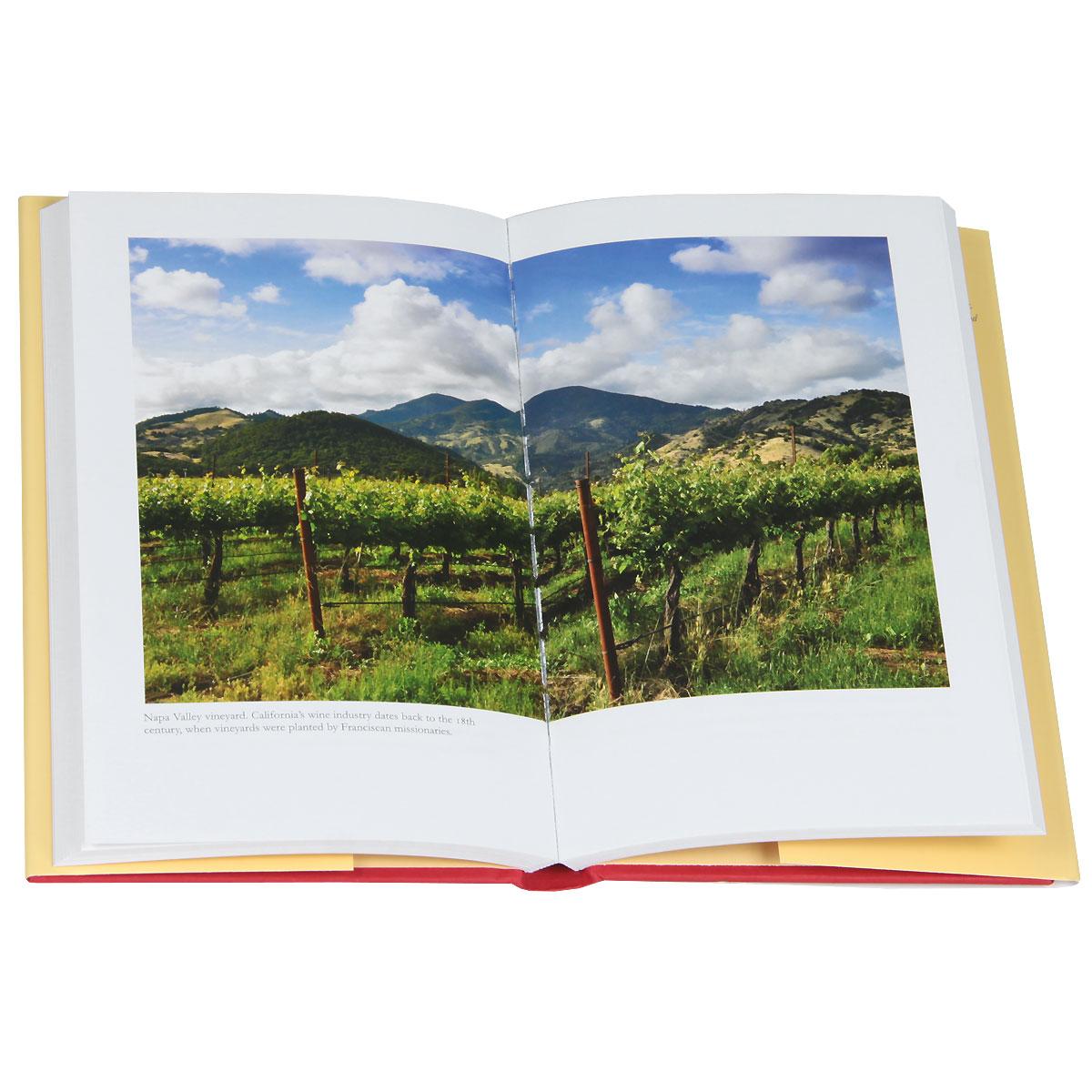 Wine: A Global History