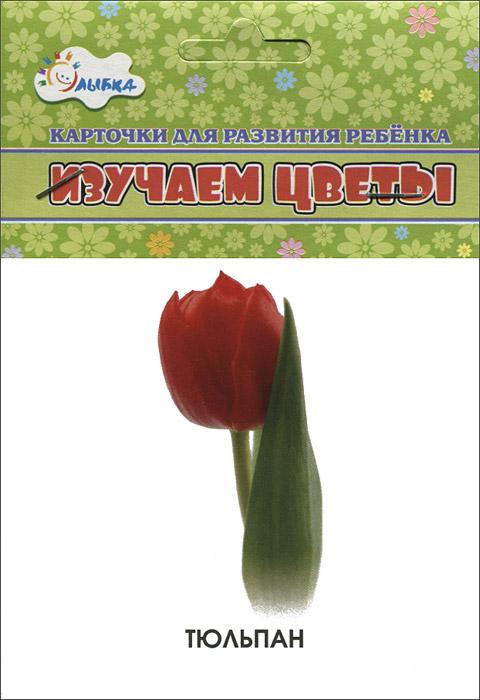 Изучаем цветы (набор из 12 карточек)
