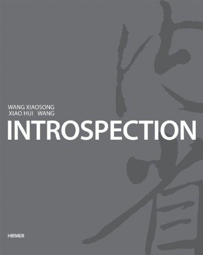 IntroSpection: Art from Xiao Hui Wang and Wang Xiaosong