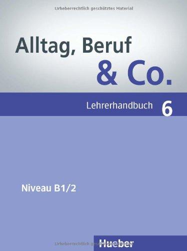 Alltag, Beruf & Co. 6, Lehrerhandbuch