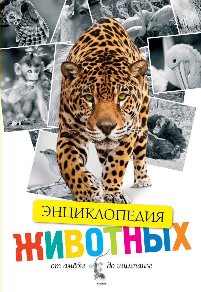 Энциклопедия. Животные. От амебы до шимпанзе