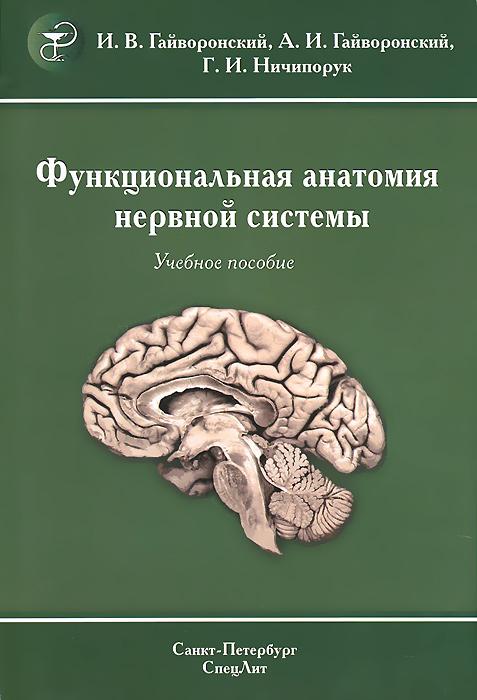 Функциональная анатомия центральной нервной системы. Учебное пособие