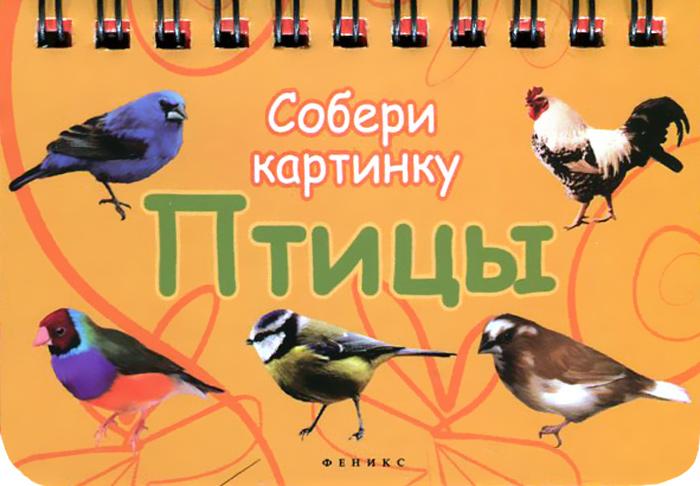 Птицы. Собери картинку