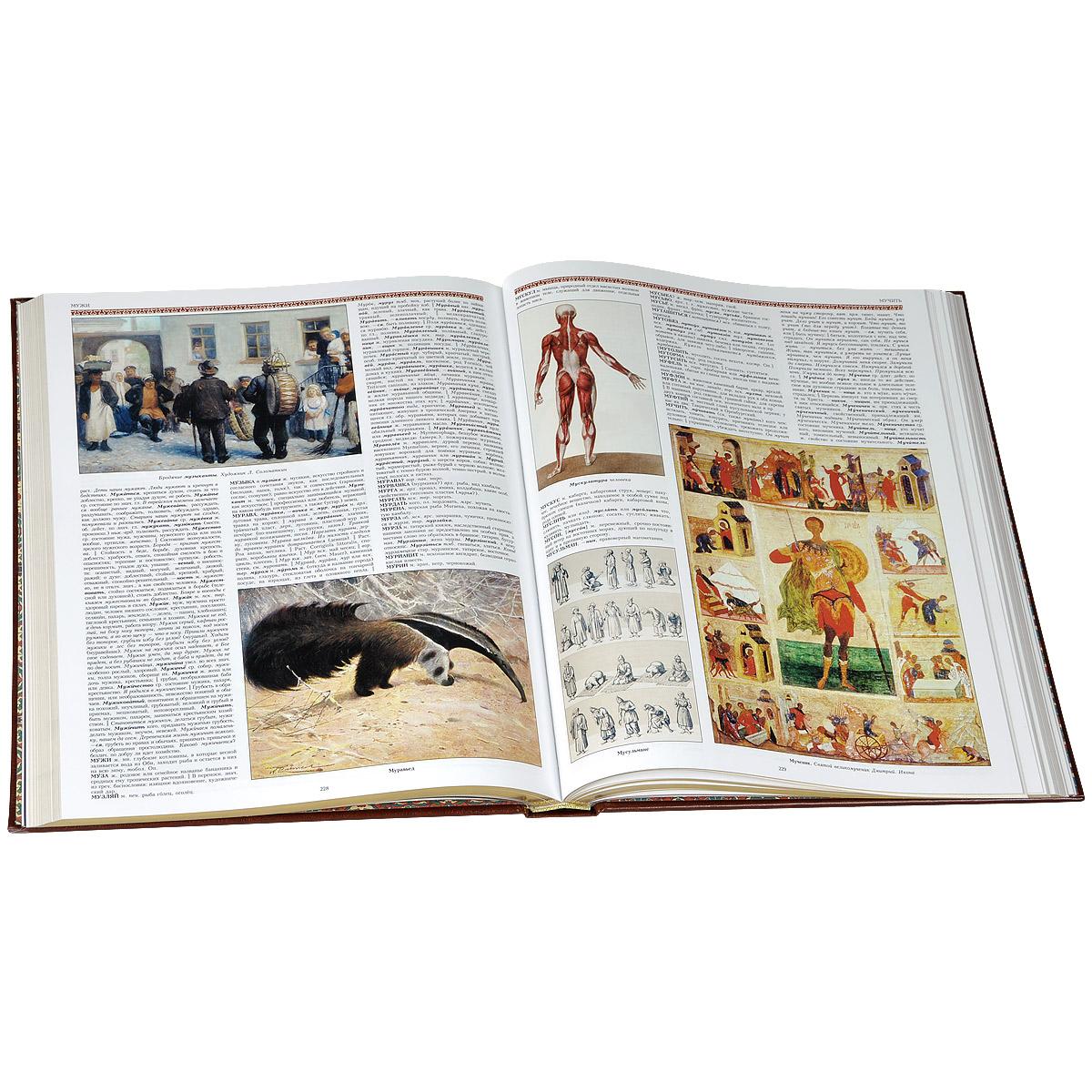 Иллюстрированный толковый словарь живого великорусского языка (подарочное издание)