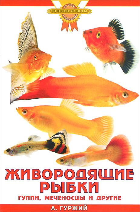 Живородящие рыбки. Гуппи, меченосцы и другие