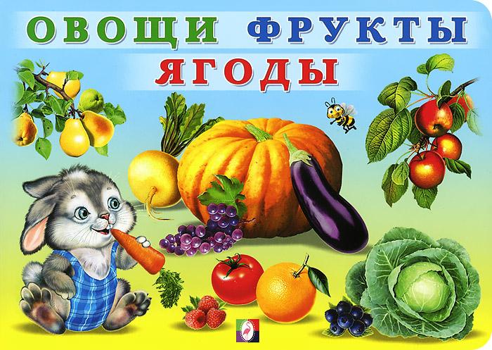 Овощи. Фрукты. Ягоды