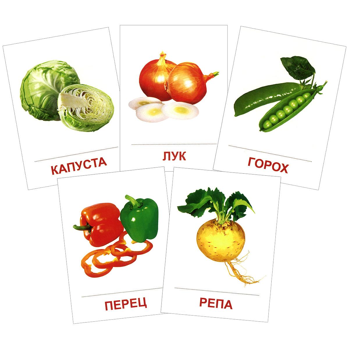 Овощи (набор из 16 карточек)