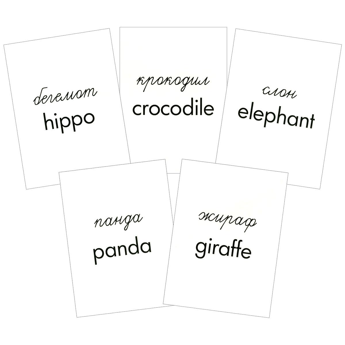 Животные жарких стран (набор из 16 карточек)