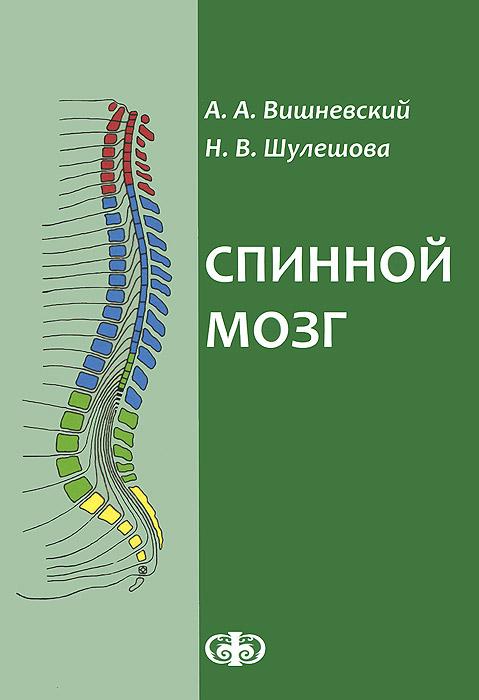 Спинной мозг. Клинические и патофизиологические сопоставления