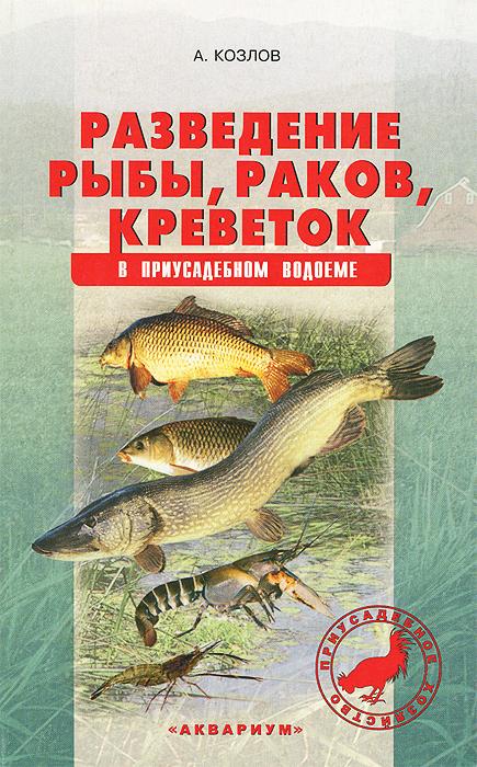 Разведение рыбы, раков, креветок в приусадебном водоеме