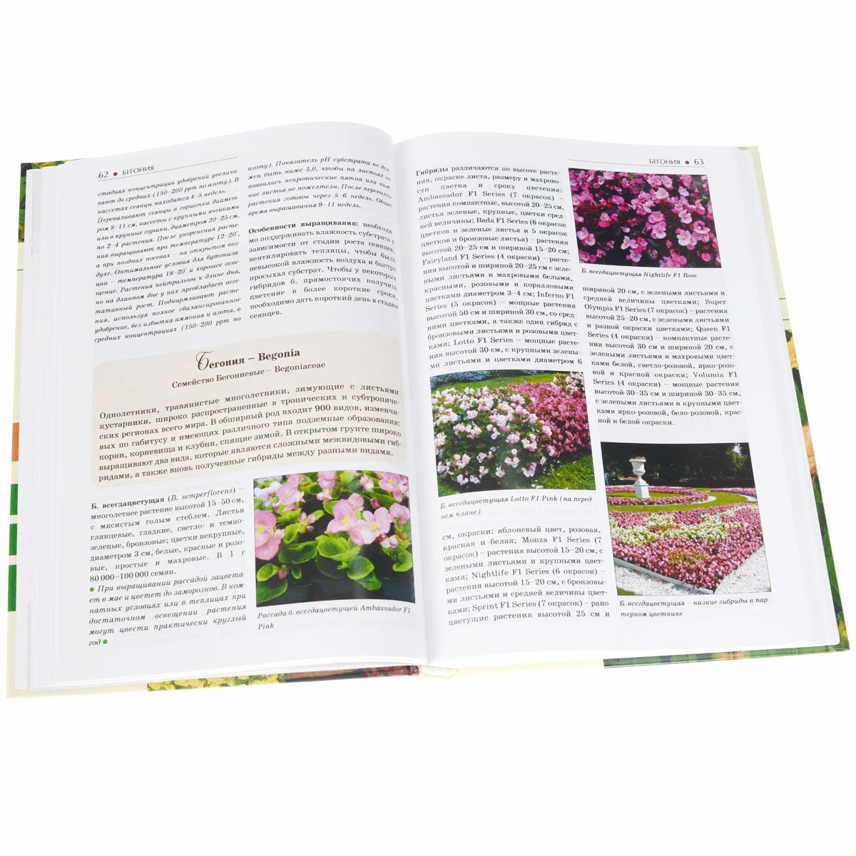 Однолетние и многолетние декоративные растения для цветников. Иллюстрированный атлас