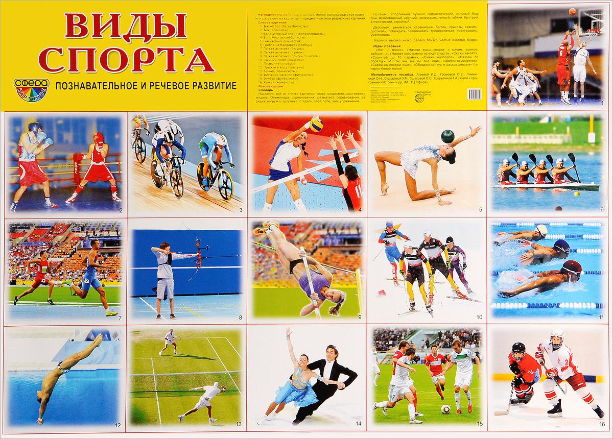 Виды спорта. Наглядное пособие