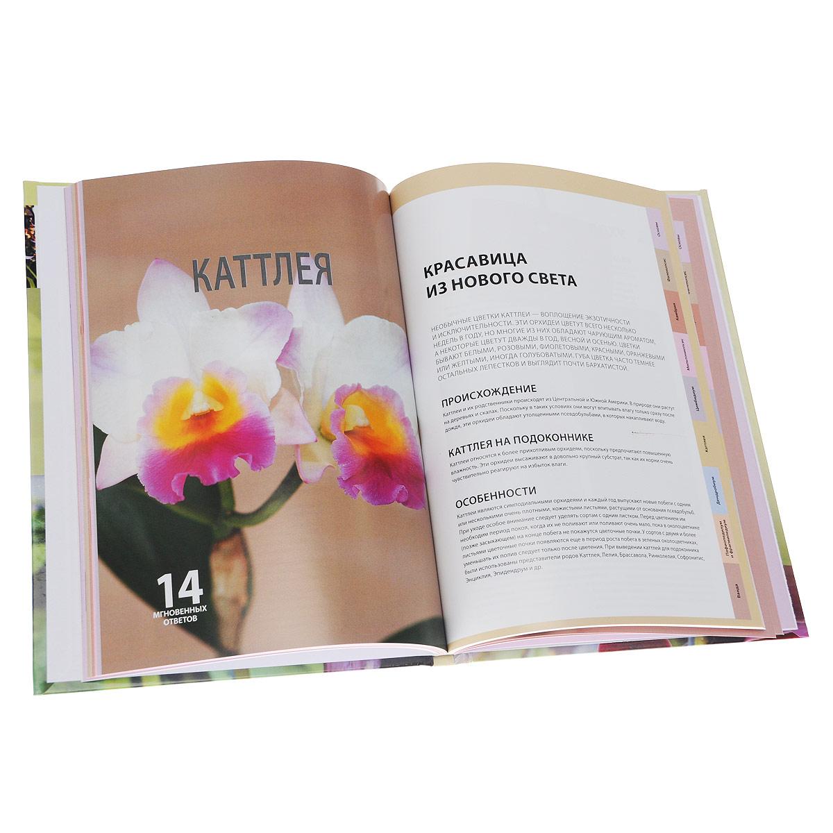 Всё об орхидеях. 80 лучших видов и сортов. Практическое руководство по выращиванию и уходу