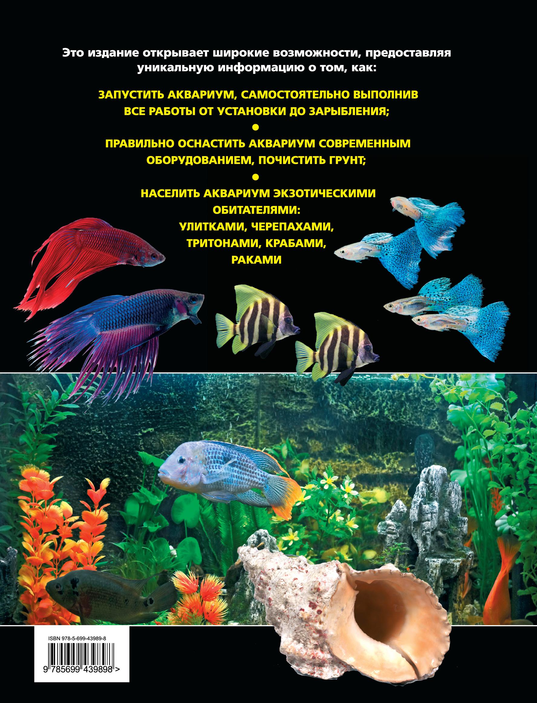 Легкий аквариум. Школа домашнего аквариумиста