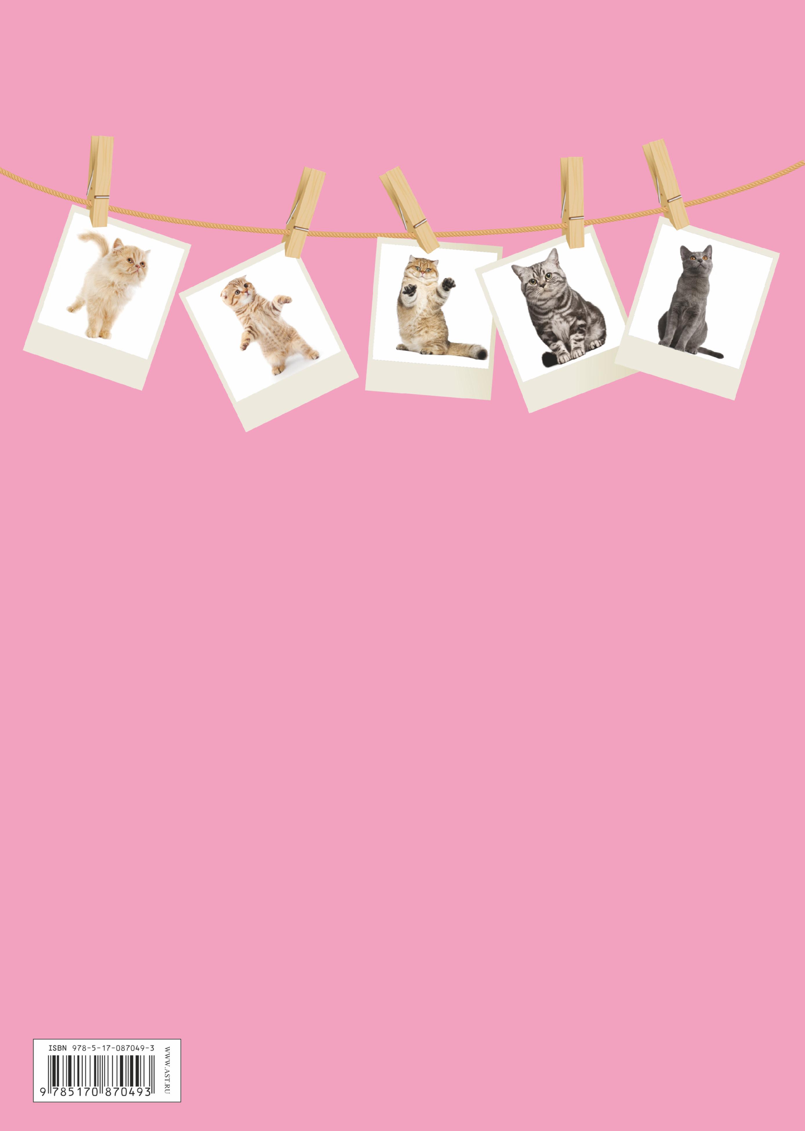 Котята (+ 30 плакатов и раскрасок)